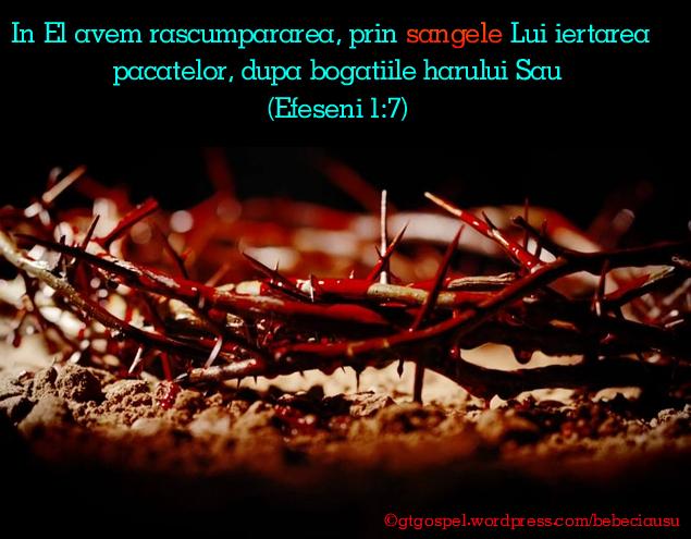 Efeseni 1-7